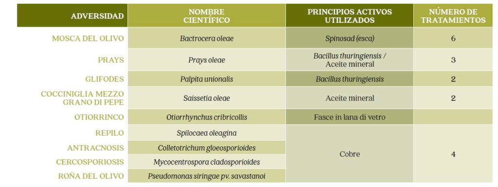 cultivo olivar