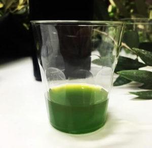 olivar en seto