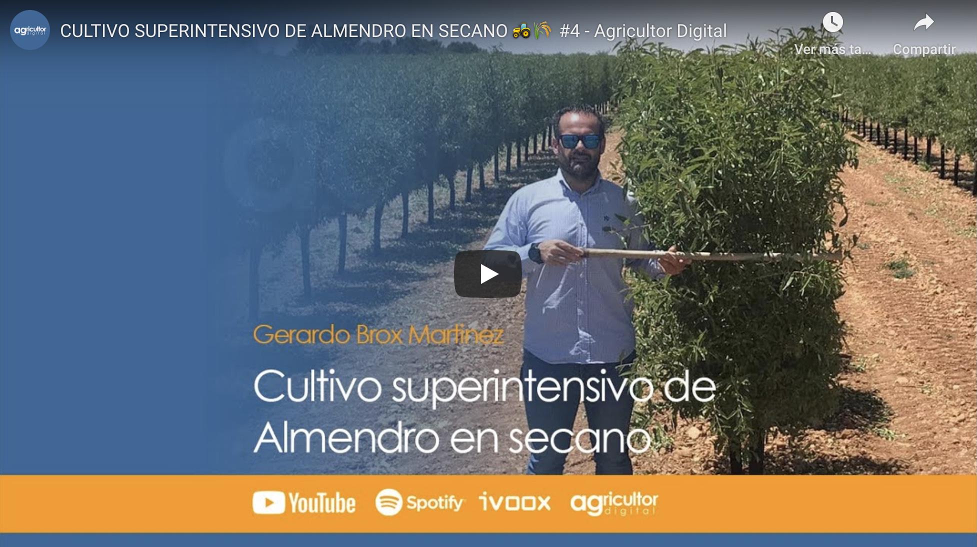 Cultivo Superintensivo De Almendro En Secano