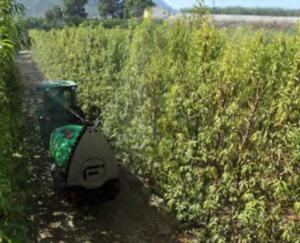 Smartomizer Inverter con alerón especial para pulverizar cultivos en palmeta.