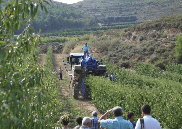 agricultura eficiente