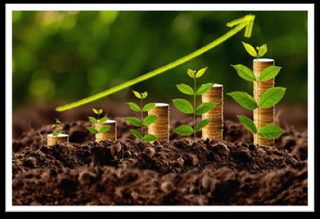 L'Agricoltura Efficiente Può Essere Un Modello Di Investimento Molto Redditizio Per I Profili Più Tradizionali