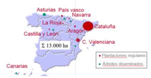 Figura 6. Distribución de la superficie de avellano en España correspondiente al año 2018 en plantaciones regulares y en árboles diseminados de las misma para el año 2018. Fuente MAPA.