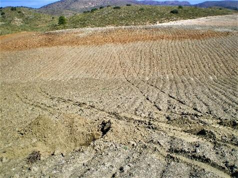 La distribución de suelos dentro de la parcela como elemento clave para la sectorización.