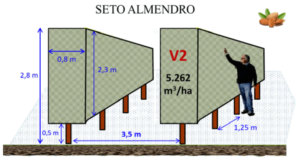 Figura 14: Sistemas de formación para el seto del almendro (superior) y del avellano (centro e inferior), con los correspondientes marcos de plantación y volúmenes productivos.