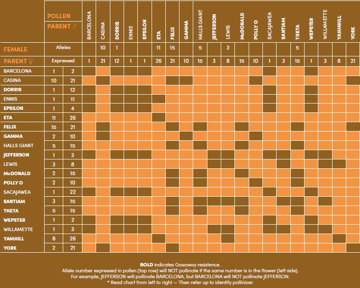 Tabla 3: Compatibilidad polínica de variedades de avellano, indicándose los alelos de incompatbilidad. Fuente: Oregon State University, Hazelnut Breeding Program (USA).