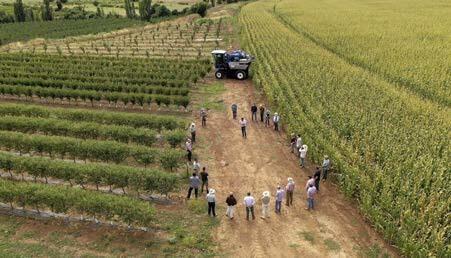 Charla técnica, se aprecia a un costado el cultivo tradicional de maíz.