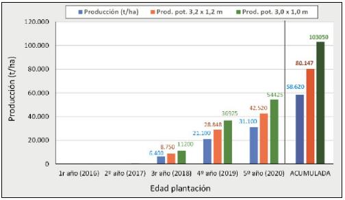 Figura 17. Producciones anuales y acumuladas de la variedad 'Agen' en Agrícola San Miguel (Chile), hasta el quinto año de plantación con el marco real de 3,5 x 1,5 m (barras azules) y producciones potenciales esperadas para marcos de plantación de 3,2 x 1,2 m y 3,0 x 1,0 m.