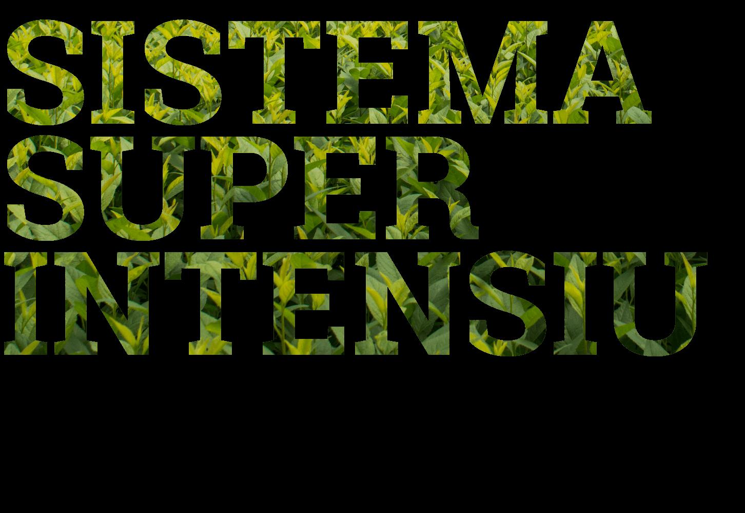 sistema super intensiu