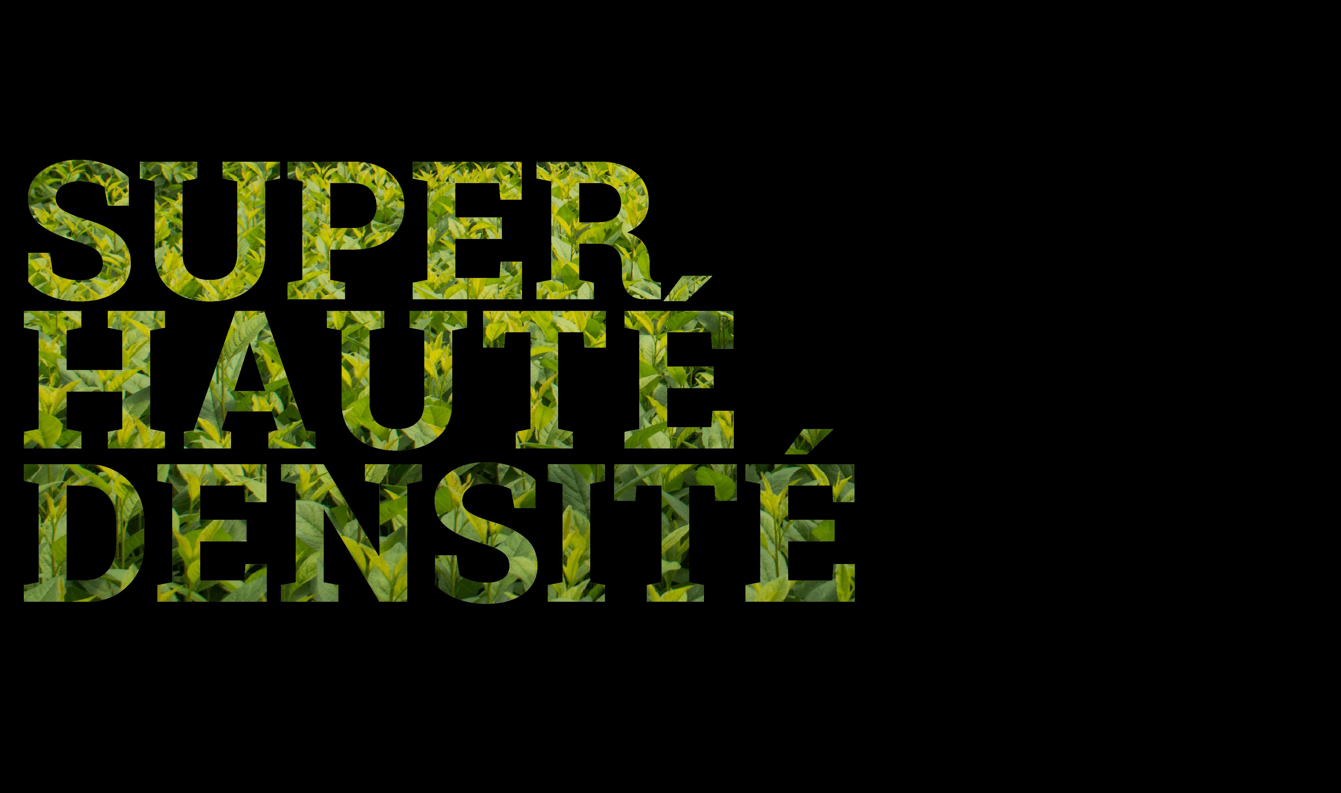 SUPER HUATÉ DENSITÉ